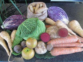 Fresh, healthy organic vegetables